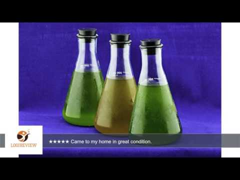 AT Plankton Delight 5X Concentrate - Live Marine Phytoplankton Food for Fish, Bivalves, Corals,