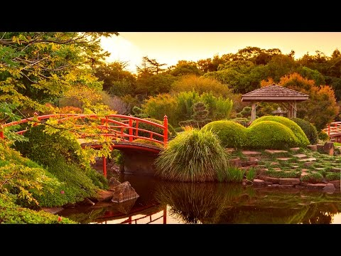 Meditation Music - Relaxing Garden - Peaceful Music