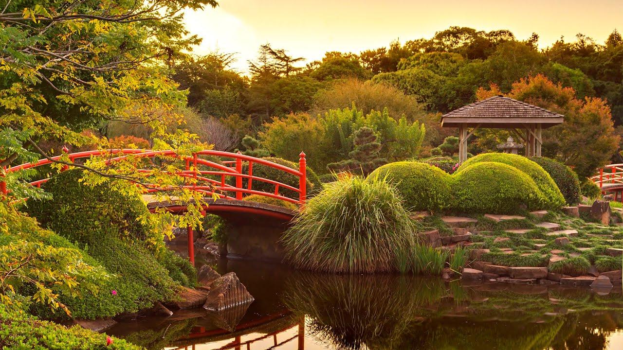 meditation music - relaxing garden