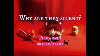 Pick a card (CAT) oracle/ tarot reading - Why are they silent?