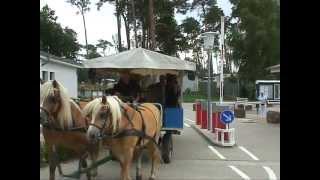 eroeffnung campingpark buntspecht