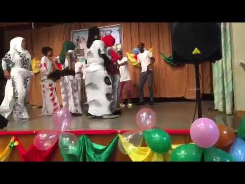 Somalia community party