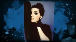 LIZA MINNELLI love pains