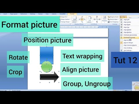 #12 MS Word - Format Picture (part II) | position | text wrap | align picture |group picture | hindi