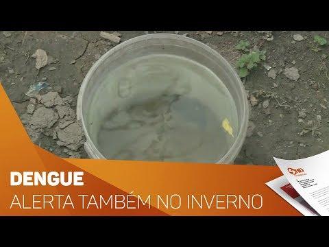 Dengue: Alerta também no inverno - TV SOROCABA/SBT