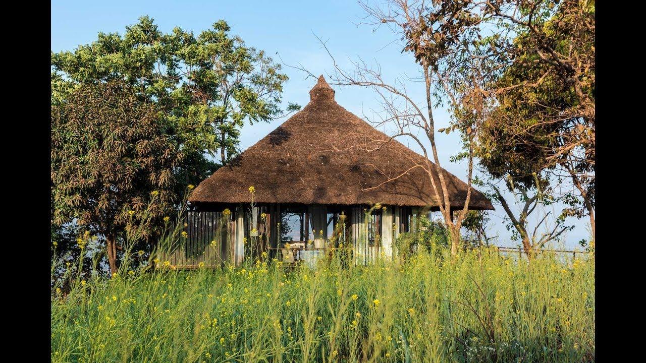 Treevilla At Forest Hills Architecture Brio Tala