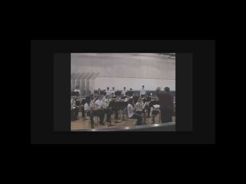 Winfield High School Honors Band Concert 2010 - Part 2