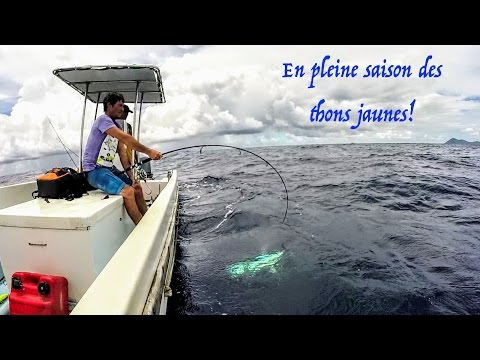 BIG GAME FISHING IN MAYOTTE ISLAND, (visible que sur ORDINATEUR) pêche à mayotte, video #20