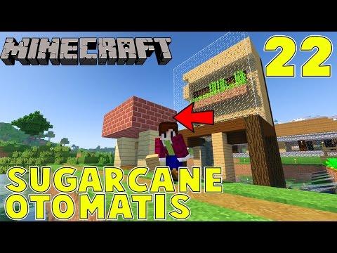 SUGARCANE OTOMATIS - Minecraft Survival Indonesia #22