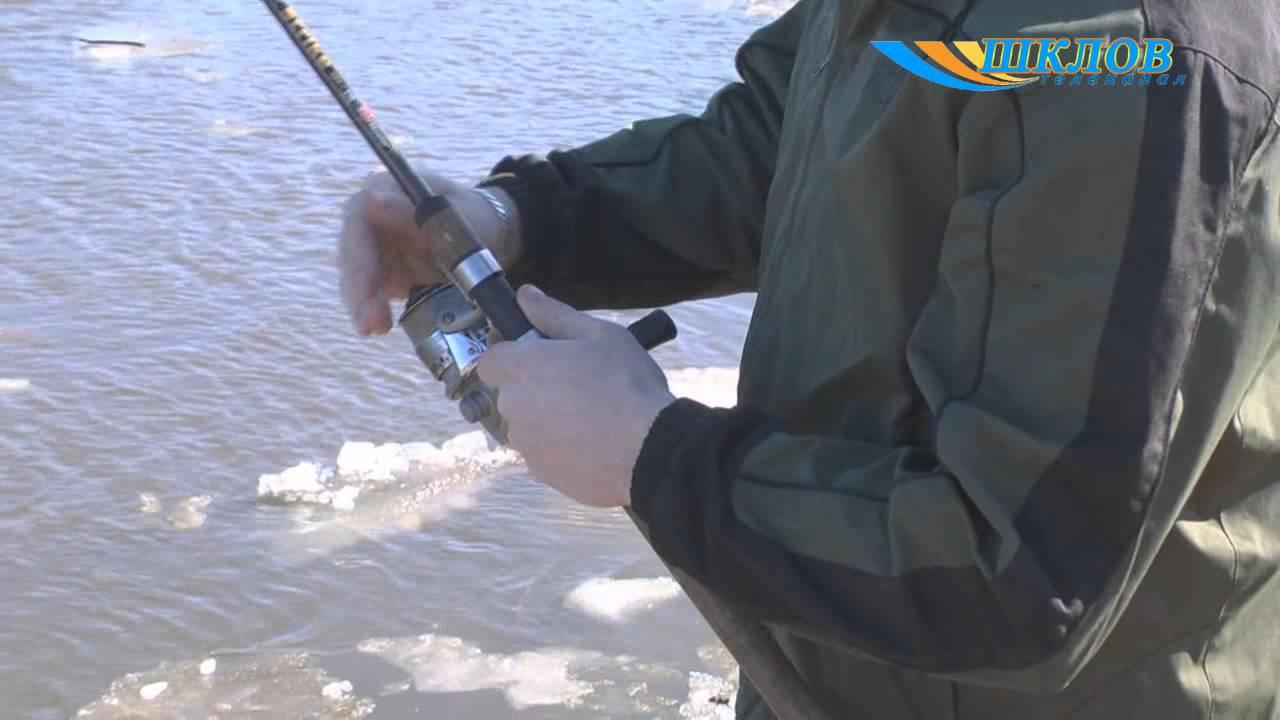 рыбалка в шкловском районе