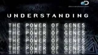 Na Escola: Genética, Tudo sobre o Poder dos Genes. - 1 / 4