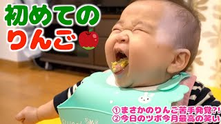 Yune eats apples for the first time.She seems not good at apples.【8 month old baby】