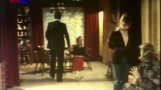 Godišnja doba Željke, Višnje i Branke 1979)