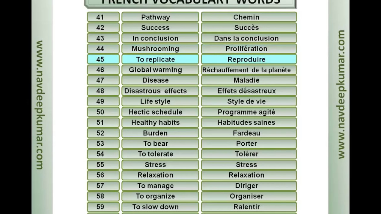 FRENCH DELF B1 : Vocabulary Part 1