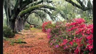 Diane Arkenstone The Secret Garden