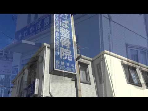 わかば整骨院(千葉市若葉区)の投稿動画一覧【接骨ネット ...