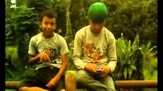 Aku yang dulu bukan lah yang sekarang(Punk Rock Jawa 2 )
