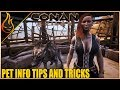 Eggs, Locations, Tricks And More Conan Exiles 2018 | Pet Tips