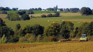 Southern Farmlands