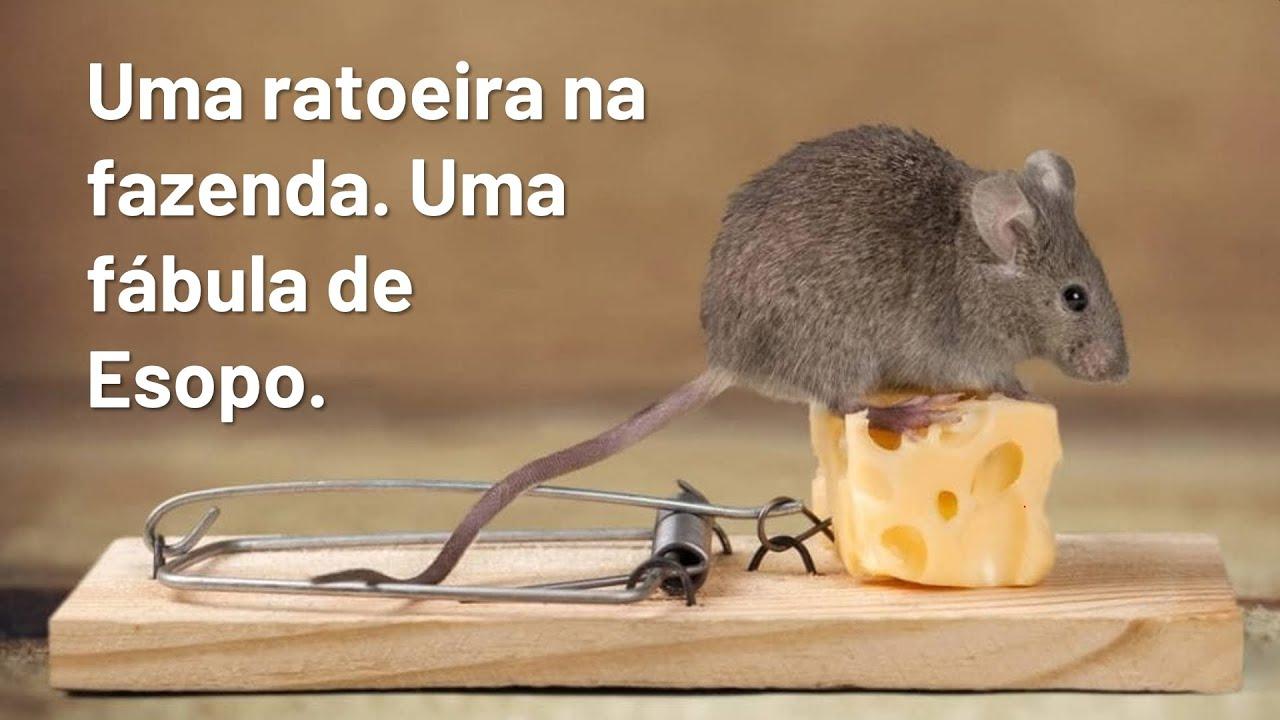 4 Uma ratoeira na fazenda