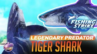 《釣魚大亨 Fishing Strike》 Legendary fish Predator Tiger Shark catch