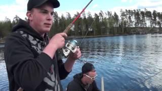 Gjeddefiske i Setten