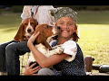 Dog lovers-Celine dion (because...