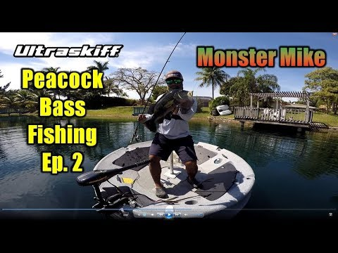Monster Mike Peacock Bass Fishing In Miami FL