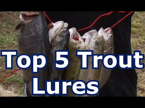 Best 5 Trout Lures For Lakes, Rivers, And Streams- Tips