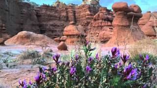 Goblin Valley State Park Video