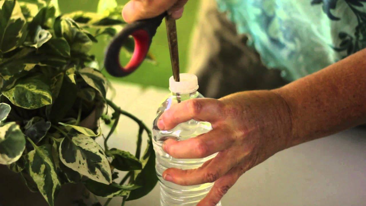 Wonderlijk 3 trucjes om planten water te geven als je op vakantie bent YW-23