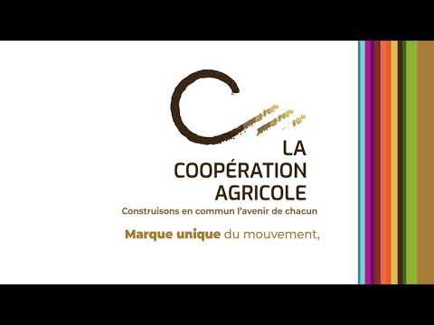 VOEUX 2020 LA COOPERATION AGRICOLE
