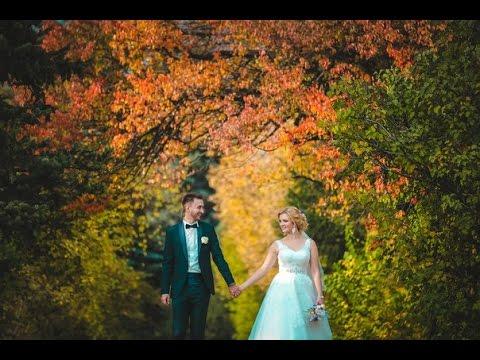 Самая красивая свадьба Свадебный ролик Д и А
