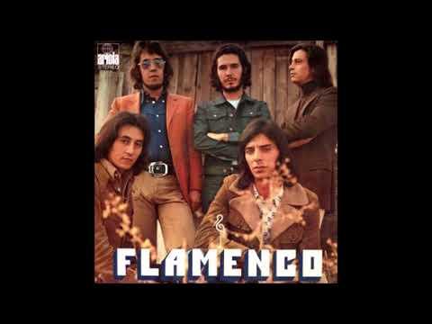 FLAMENCO - Hacia el camino divino