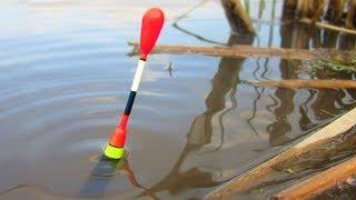КАРАСЬ НА ЧЕСНОК и опасный поход на реку / Две рыбалки на сломе погоды