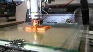Stampante 3DRag - Prima Stampa