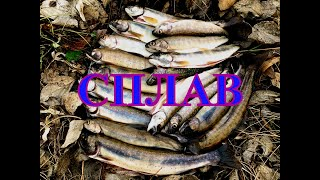 рыбалка 2020 ловим хариуса на мушку сплав по горной реке