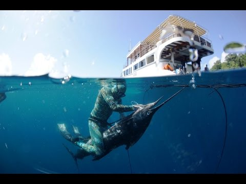INDONESIA SPEARFISHING CHARTER -  EAST JAVA SPEARFISHING TRIP