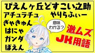 【 🔴Live 】1mmも知らない流行語/JK用語で視聴者参加型クイズ大会🎊【#シロ生放送 /ミリ知ら 】