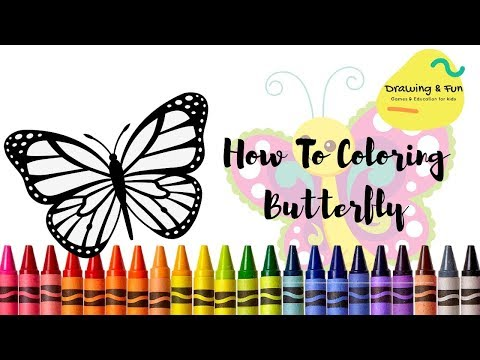 How To Drawing And Coloring Butterfly Menggambar Dan Mewarnai Kupu Kupu