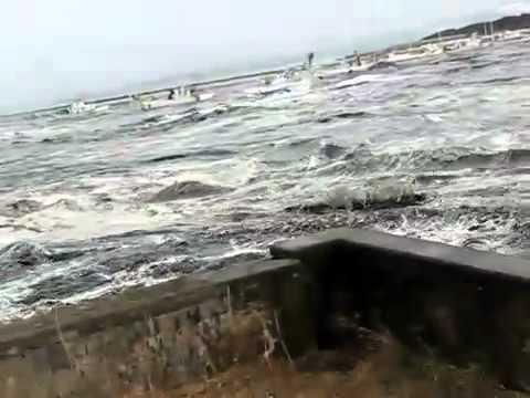 Япония цунами 2011
