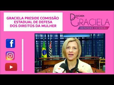 1ª presidente da Comissão de Defesa dos Direitos da Mulher da ALESP