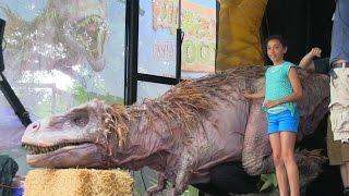 TREX videos - Dallas Zoo Dinos Pt3