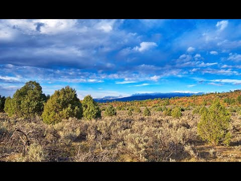 New Mexico Land For Sale: Chama River Estates Drone Video