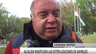 ALCALDÍA MASIFICARÁ LAS ESTERILIZACIONES EN ANIMALES