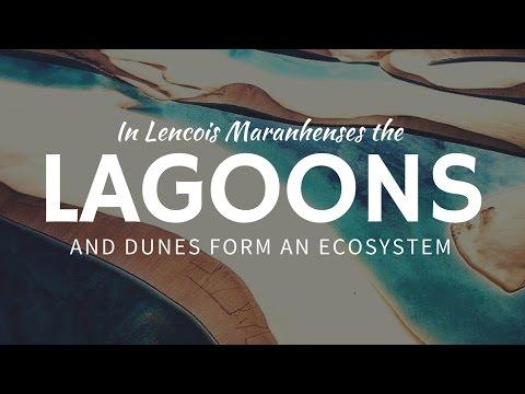 Dunes & LAGOONS in Lencois Maranhenses: exotic travel in Brazil
