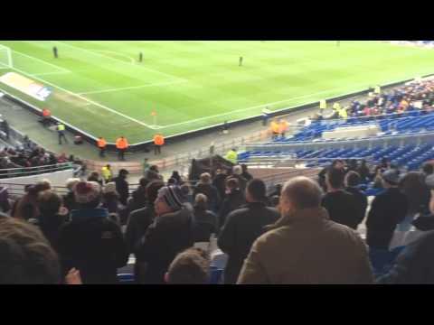 Crowd - Cardiff v Fulham