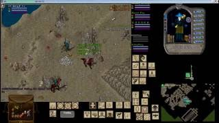 Ultima Online another fight in Despise Dungeon Great Lakes