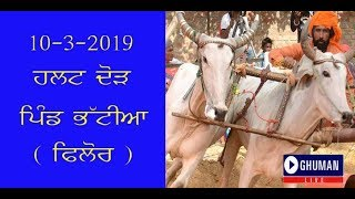 LIVE HALT RACE PIND BHATIYAN (  FILUR )  10-3-2019