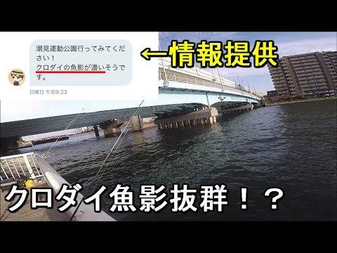 【潮見運動公園】視聴者さんから情報提供があった釣り場でクロダイを狙う!【2019.04.05】